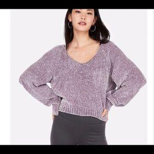 Express Velvet Chenille V neck purple sweater euc